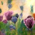 Sommerwiese (Format: 50 x 60 cm)